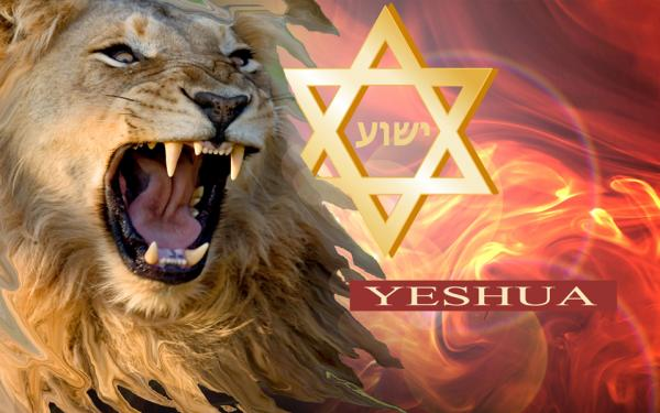 p-1597-star_of_david_warrior_flag_web_site_size.jpg