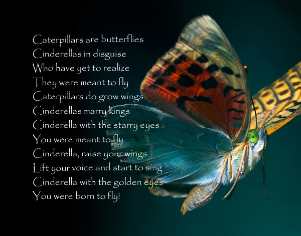 p-1691-128_caterpillars_butterflies_1.jpg