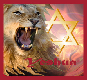 LION OF JUDAH 22x24 Flag